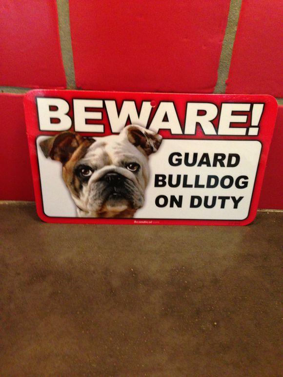 Wilma the Guard Dog